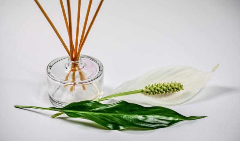 PIXABAY_Duft_Aromatherapie_Geruch